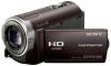 Sony hdr-cx350e
